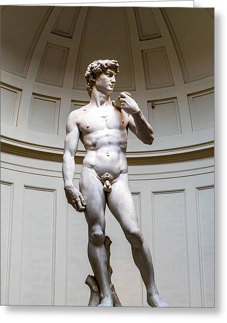 Florence Sculptures Greeting Cards - David of Florence Greeting Card by Terry Baldridge