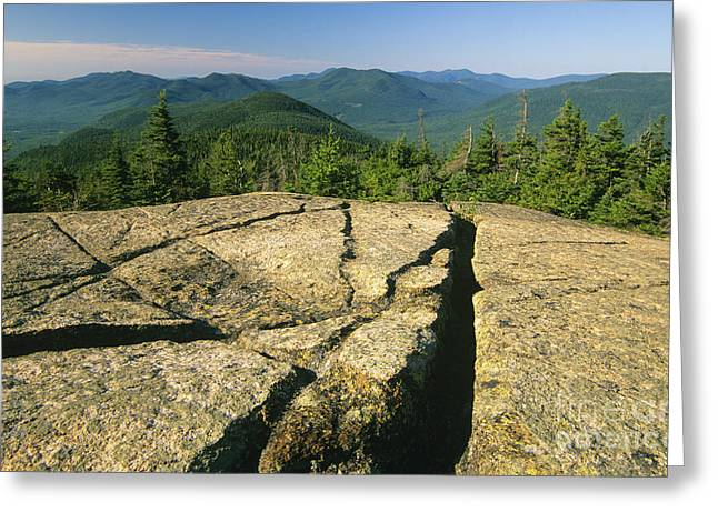 Backcountry Greeting Cards - Davis Path - White Mountains New Hampshire Greeting Card by Erin Paul Donovan