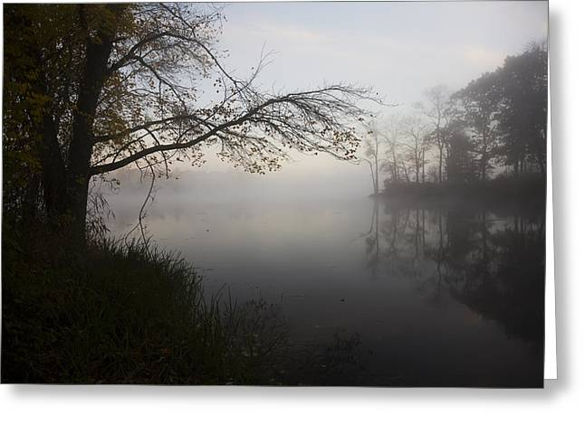 Reflections Of Sky In Water Greeting Cards - Dawn At Pond In Autumn  Salem Greeting Card by Lynn Stone