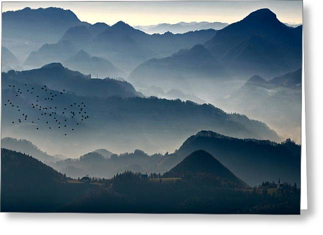 Flock Greeting Cards - Dawn Greeting Card by Matjaz Cater