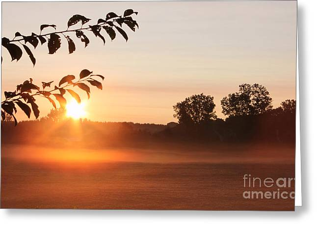 Rising Greeting Cards - Dawn of a Brand New Day  Greeting Card by Cathy  Beharriell