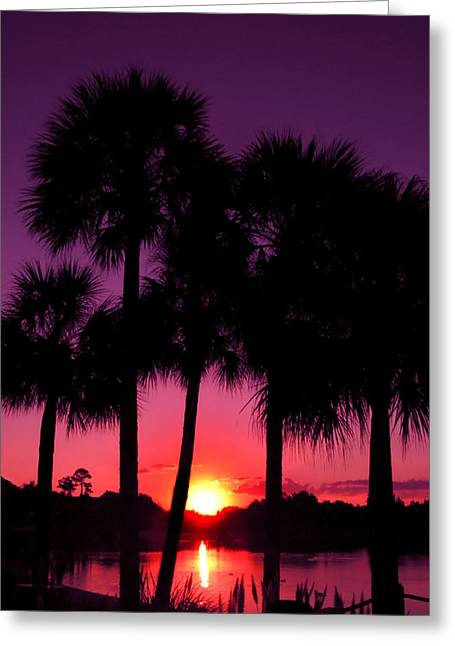 Lake Buena Vista Greeting Cards - Dawn Of Another Perfect Day Greeting Card by Kenneth Krolikowski
