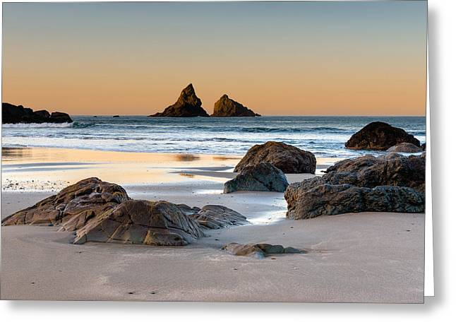 Sea Lions Greeting Cards - Dawn of Day Greeting Card by William  Dziuk