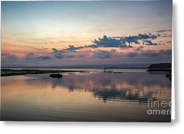 Wildlife Refuge. Greeting Cards - Dawn On The Willapa Bay Greeting Card by Robert Bales