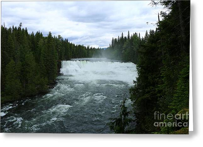 Dawson Falls Greeting Card by Christiane Schulze Art And Photography