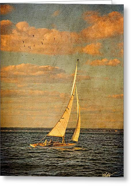 Ocean Sailing Greeting Cards - Day Sail Greeting Card by Michael Petrizzo
