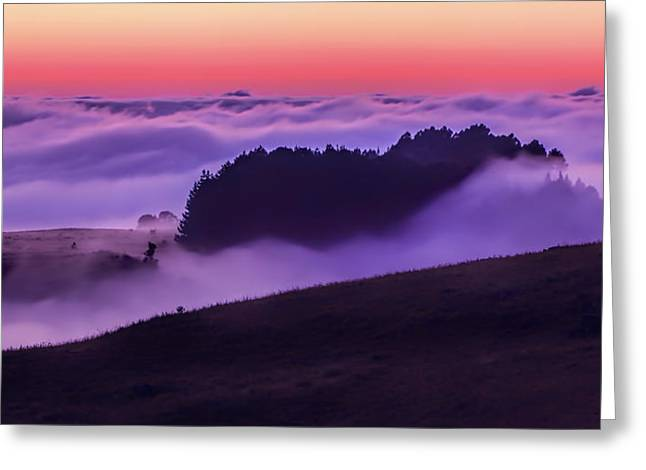 Mountaintop. Trees Greeting Cards - Daybreak Fog Greeting Card by Steve Buissinne