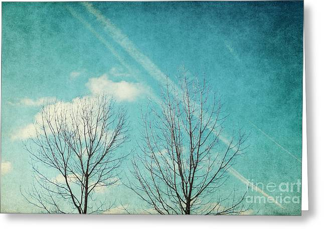 Winter Tree Greeting Cards - Daydreamer Greeting Card by Angela Doelling AD DESIGN Photo and PhotoArt
