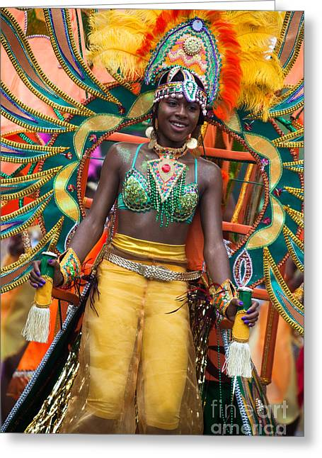 Dc Caribbean Carnival Greeting Cards - DC Caribbean Carnival No 16 Greeting Card by Irene Abdou