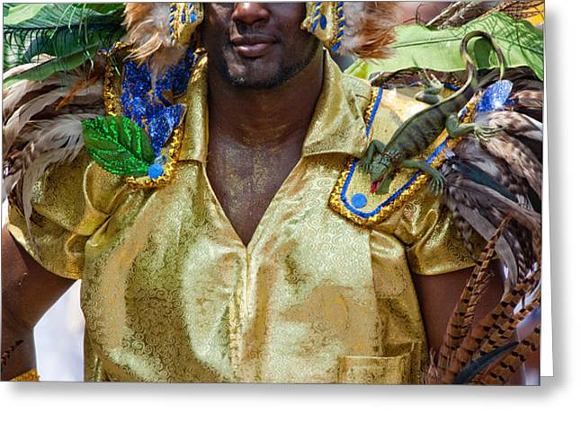 DC Caribbean Carnival No 21 Greeting Card by Irene Abdou