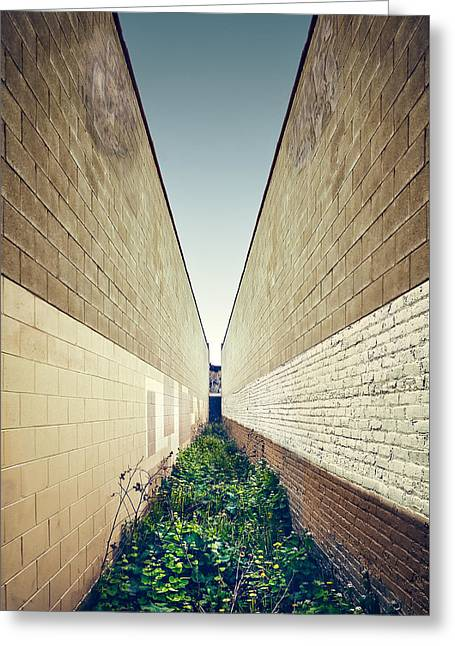 Dead End Alley Greeting Card by Scott Norris