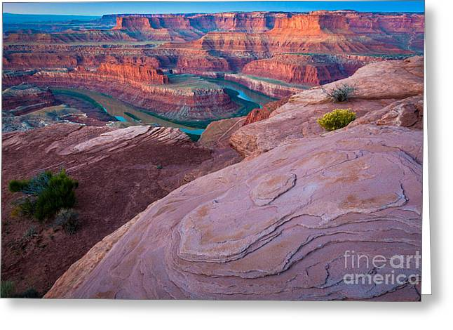 Dead Horse Point Greeting Card by Inge Johnsson
