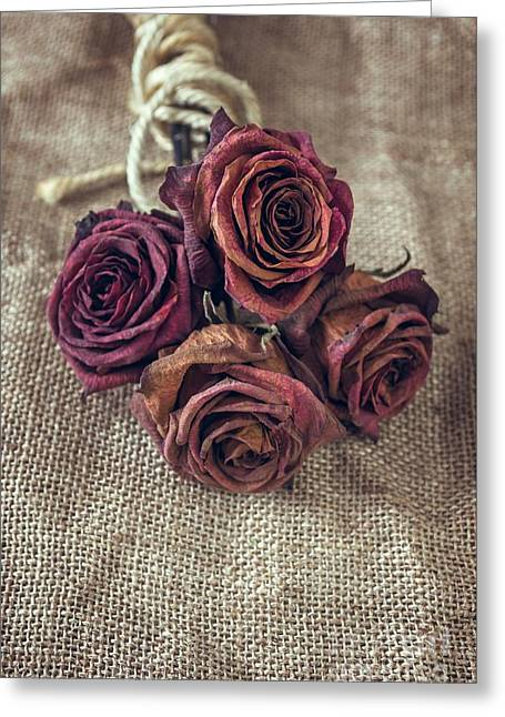 Dead Roses Greeting Card by Carlos Caetano