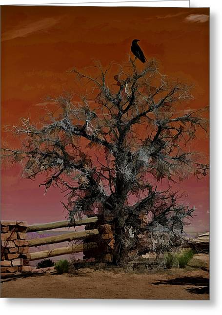 Gnarly Greeting Cards - Dead Tree Sunset W5266 Greeting Card by Wes and Dotty Weber