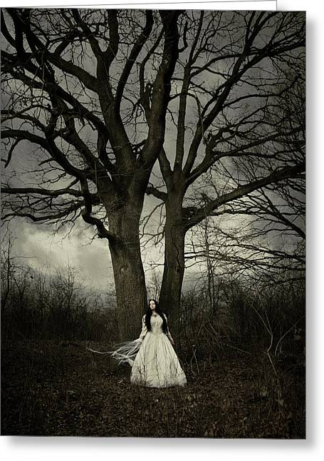 Black Hair Greeting Cards - Dead tree Greeting Card by Wojciech Zwolinski