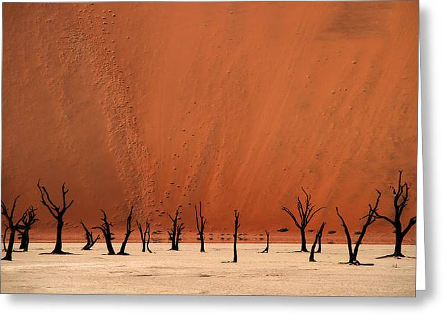 Deadvlei Greeting Card by Hans-wolfgang Hawerkamp
