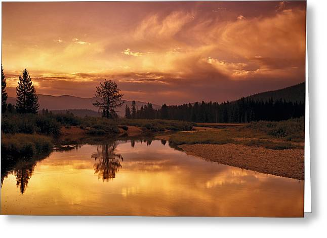 Deadwood Greeting Cards - Deadwood River Sunrise Greeting Card by Leland D Howard