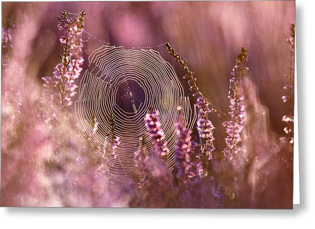 Jewellery Greeting Cards - Dear Heather - Heath in Bloom Greeting Card by Roeselien Raimond