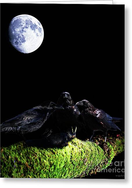 Wingsdomain Mixed Media Greeting Cards - Death of a Young Raven Greeting Card by Wingsdomain Art and Photography