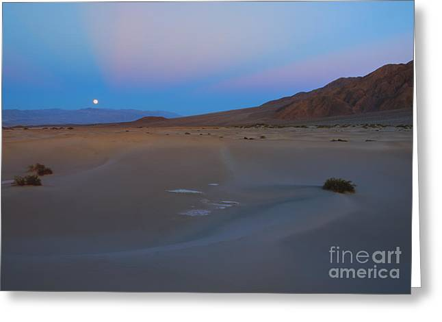 Moon Rise Greeting Cards - Death Valley Moonrise Greeting Card by Mike Dawson