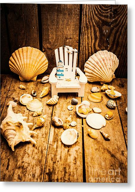 Deckchairs And Seashells Greeting Card by Jorgo Photography - Wall Art Gallery