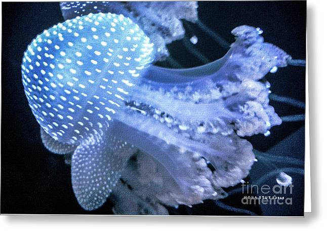 Jelly Fish Greeting Cards - Deep Blue Jelly Fish Cnidarian Quallen Greeting Card by Mona Stut