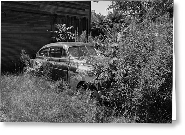 Rusted Cars Greeting Cards - Deep in the Weeds Greeting Card by Jeff Roney