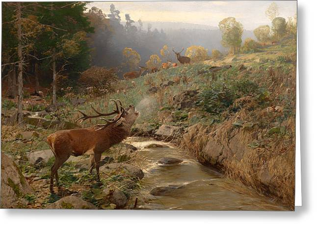 Nature Greeting Cards - Deer Herd In A Forest Clearing Greeting Card by Johann Christian Kroner