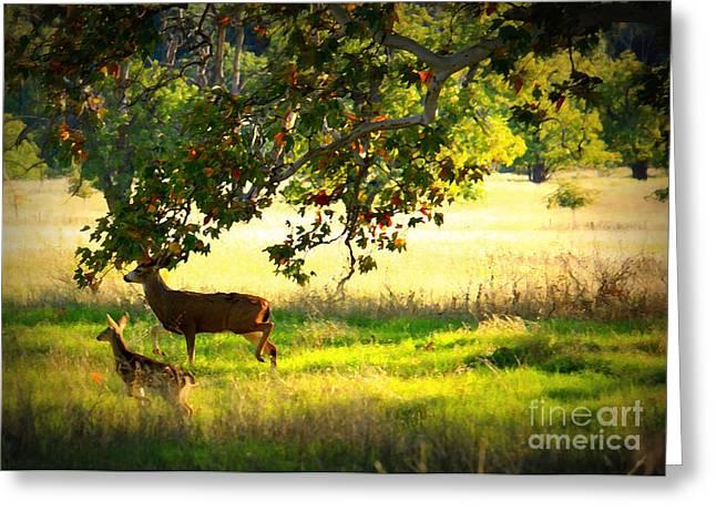Two Deer Greeting Cards - Deer in Autumn Meadow - Digital Painting Greeting Card by Carol Groenen