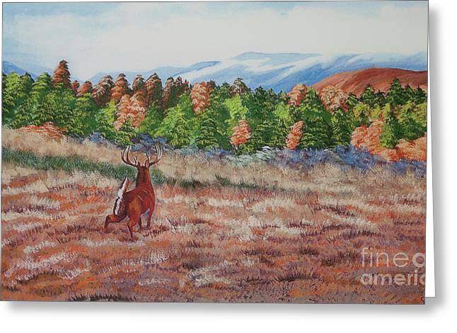 Deer In Fall Greeting Card by Charlotte Blanchard