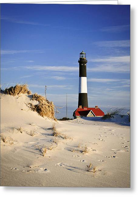 Babylon Greeting Cards - Deer Trails to Lighthouse Greeting Card by Vicki Jauron