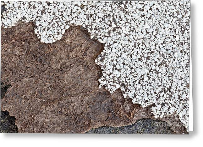 Material Composition Greeting Cards - Degrading Asbestos Shingle Greeting Card by Inga Spence