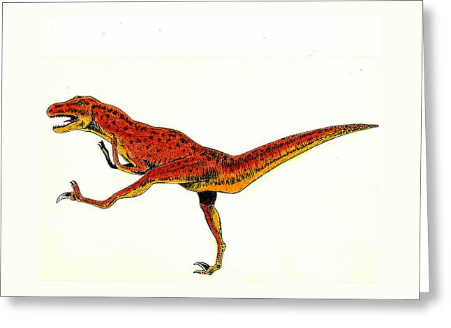 Deinonychus Greeting Card by Michael Vigliotti
