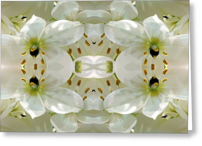 Nature Abstract Tapestries - Textiles Greeting Cards - Delicate Dreamings Greeting Card by Suzi Freeman