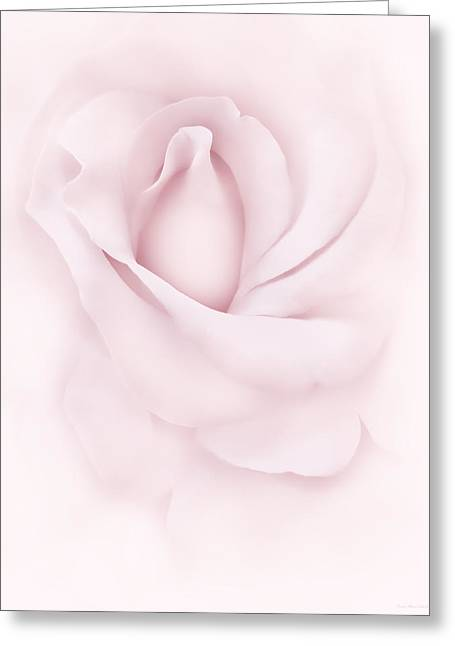 Delicate Pink Rose Flower Greeting Card by Jennie Marie Schell