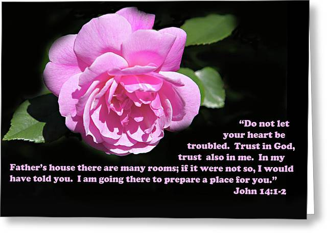 Scripture Verse Greeting Cards - Delightful Pink Rose John 14 v 1-2 Greeting Card by Linda Phelps