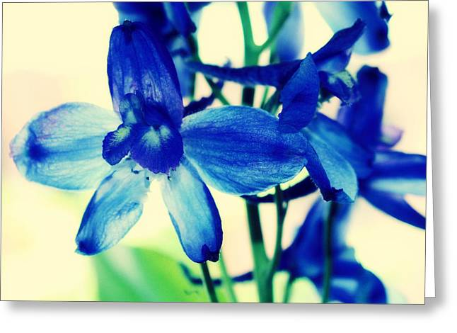 Portland Photography Greeting Cards - Delphinium Greeting Card by Cathie Tyler