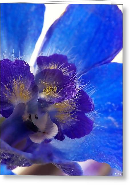 Best Selling Flower Art Greeting Cards - Delphinium Greeting Card by Lauren Radke