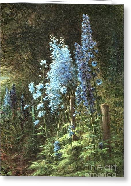 Delphiniums In A Wooded Landscape Greeting Card by Joseph Farquharson