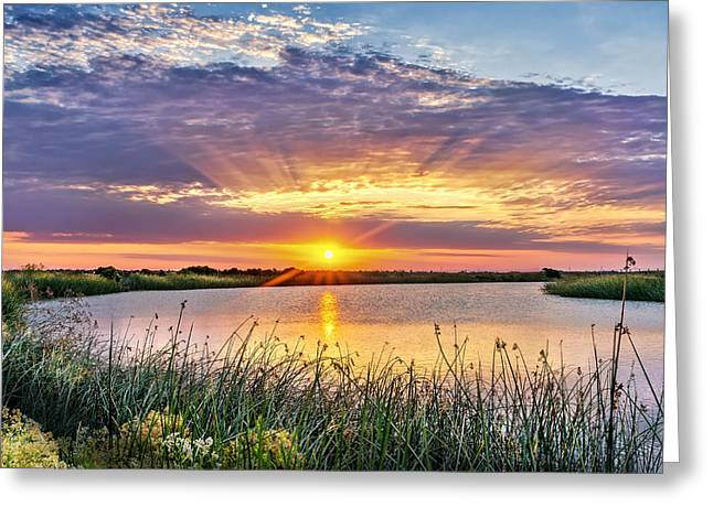 Phil Clark Photographs Greeting Cards - Delta Sunrise Greeting Card by Phil Clark