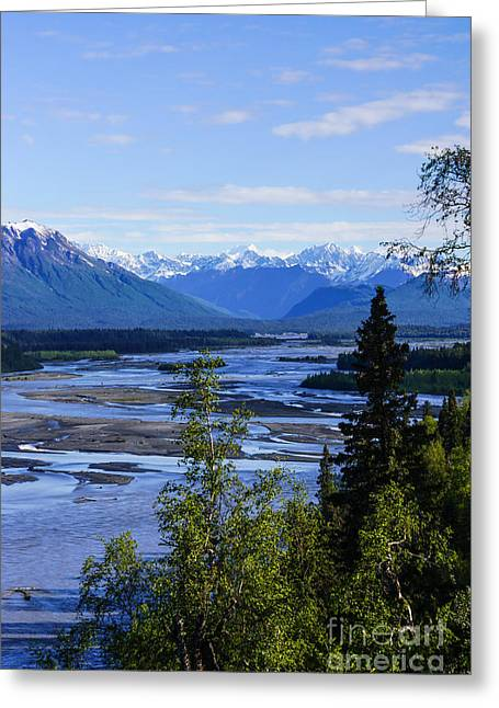 Landscape Framed Prints Greeting Cards - Denali and Trapper Creek Greeting Card by Jennifer White