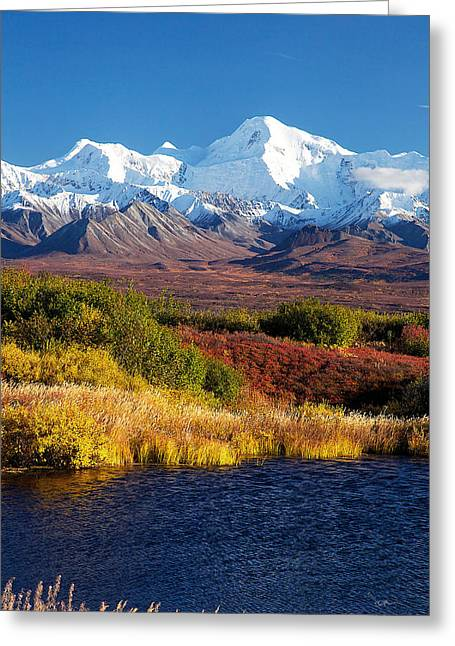 Denali Autumn Greeting Card by Ed Boudreau