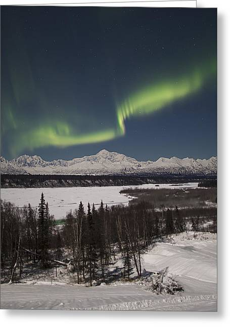 Denali Whisper Greeting Card by Ed Boudreau