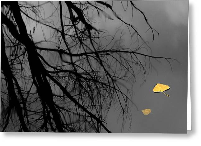 Love Lost Greeting Cards - Departed Greeting Card by Steven Milner
