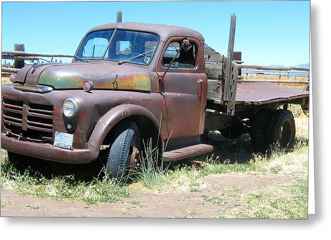 Mopar Photographs Greeting Cards - Derelict Dodge Truck Greeting Card by David King
