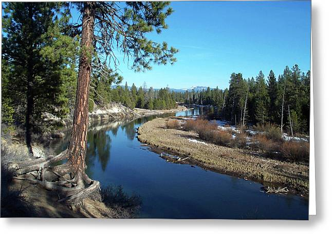 Deschutes River Greeting Card by Bonnie Bruno
