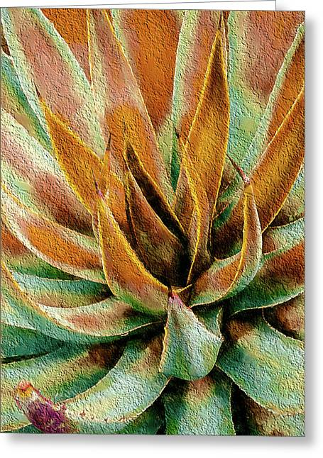 Desert Agave Greeting Card by Julie Palencia