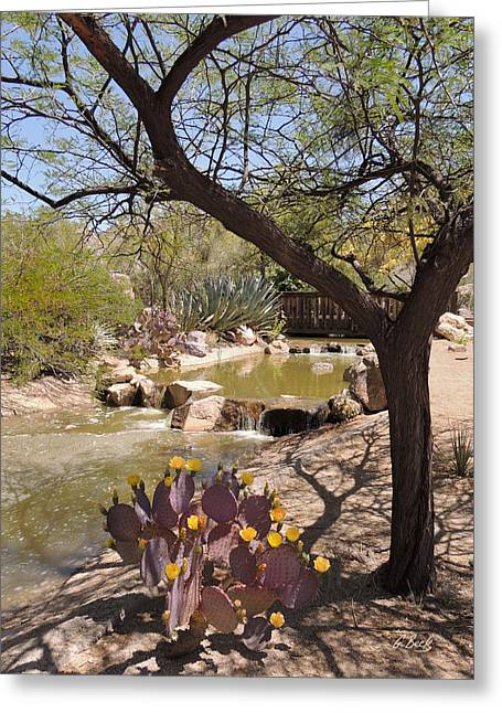 New Greeting Cards - Desert Blooms Greeting Card by Gordon Beck