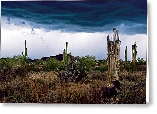 Desert Cactus Storms At The Superstitions Mountains Greeting Card by Dave Dilli