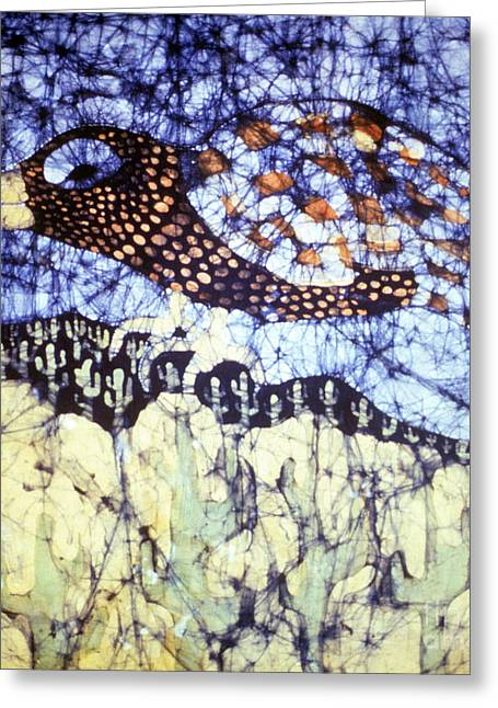 Winged Tapestries - Textiles Greeting Cards - Desert Crow Greeting Card by Carol Law Conklin